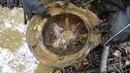 Раскопали Брошенный Немецкий блиндаж куча находок поиск с металлоискателем