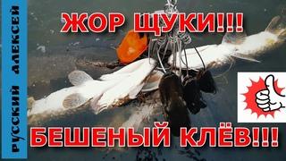 ПОПАЛ НА РАЗДАЧУ ЩУКИ - ОСЕННИЙ ЖОР ЩУКИ /Трофейная щука сошла у лодки/ Рыбалка на спиннинг.....!!!