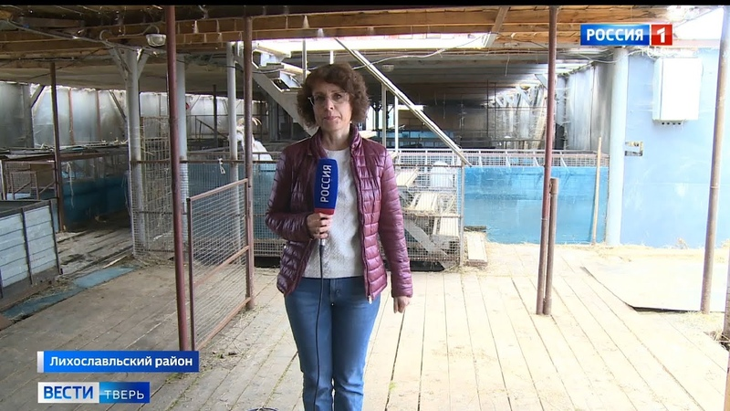 Уникальное многопрофильное хозяйство создает фермер в Лихославльском районе