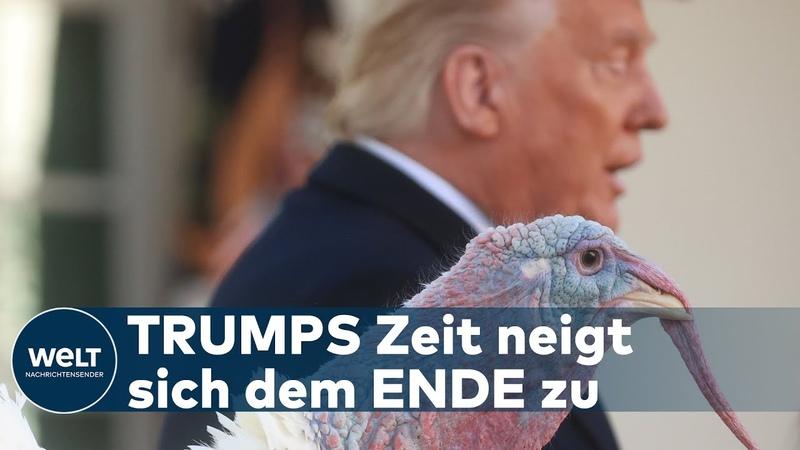 WELT ANALYSE Während Lahme Ente Trump Truthahn begnadigt unterstreicht Biden Führungsanspruch