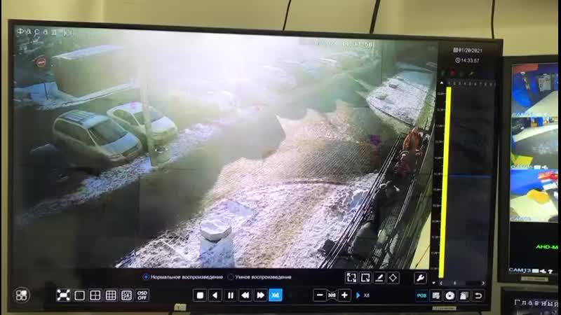 Зорро хозяева выходят из магазина забыв собаку на 24 секунде