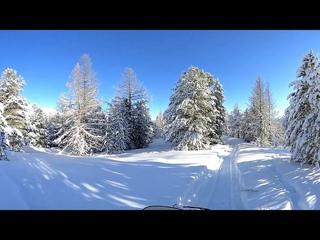 Поездка на снегоходах в районе посёлка Беляши (Джазатор)