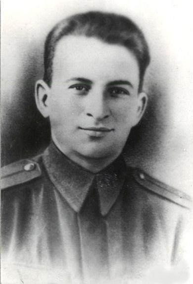 Герой Советского Союза Полюсук Н.М., изображение №1