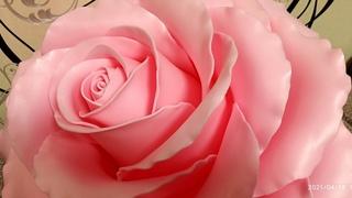 Торшер - светильник роза из изолона.  Часть 1 вырезаем и формируем лепестки.