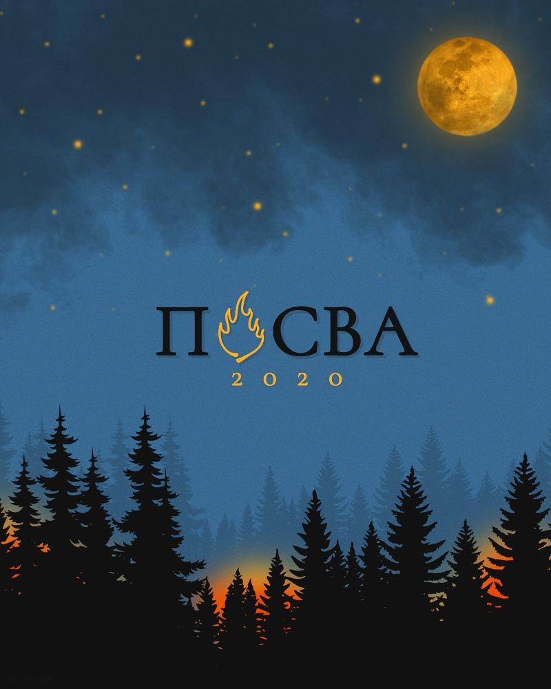 Афиша Воронеж ПОСВА 2020