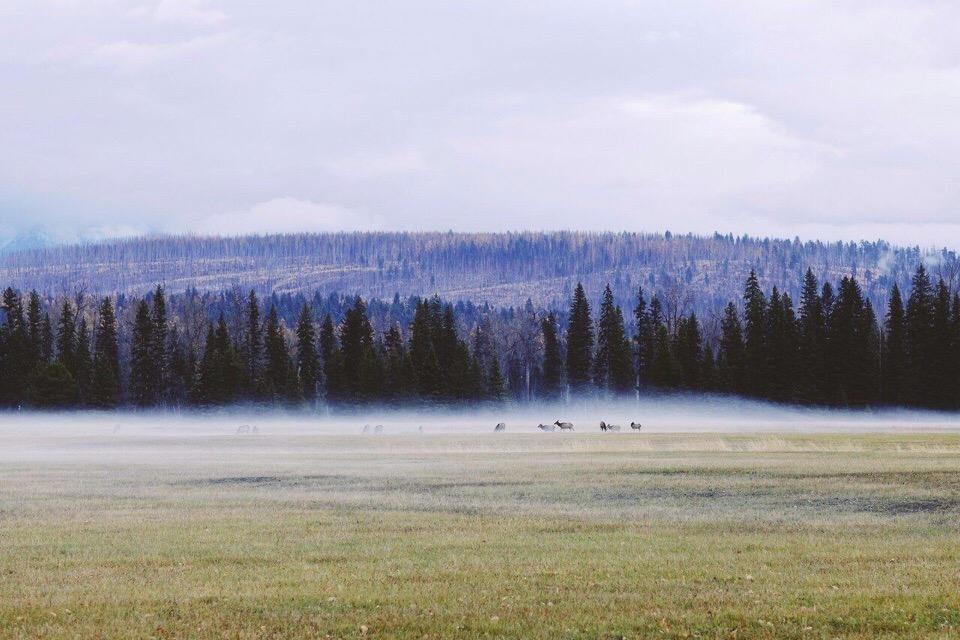 Роскошные пейзажи Норвегии - Страница 37 493K50TOxoM