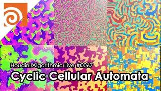 Houdini Algorithmic Live #067 - Cyclic Cellular Automata