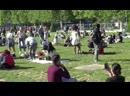 ПАРИЖ Парижане очень интересные люди , как увидят зелёную траву сразу падают
