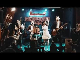 Черная Вдова в Собаке Премьера  Promo, Live