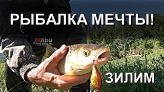 ЛОВЛЯ ХАРИУСА И ГОЛАВЛЯ НА БЛЕСНА MEPPS, РЕКА ЗИЛИМ КИШИТ РЫБОЙ!(outdoor channel)PIKE FISHING