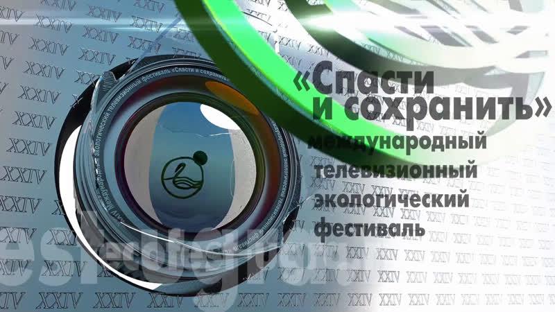 Прямая трансляция XXIV Международного экологического телефестиваля Спасти и сохранить 26 29 октября 2020 года