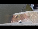 Sweden Family 9/8 fifth check video from Czech: Hot dog playing in Vltava (Part 1)