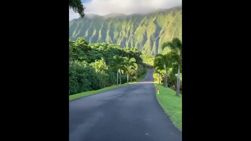 Ботанический сад Гавайи