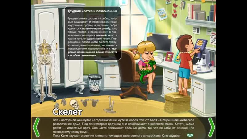 Скелет Строение тела для детей развив фильм mp4 480p mp4