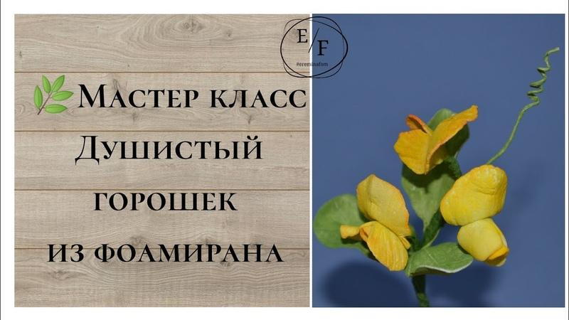Мастер класс Душистый горошек из фоамирана ereminafom DIY flowers from foamiran Flores de foamiran