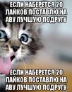 Фотоальбом Насти Щербаковой