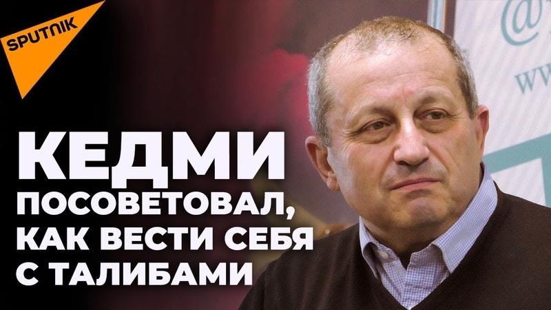 Яков Кедми реванше посмешище США и Дне позора Украины Sputnik на русском