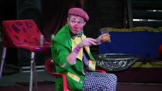 Цирк-шапито АРЕНА. Клоун Муля и номер с верблюдами