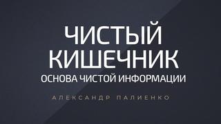 Чистый кишечник – основа чистой информации. Александр Палиенко.