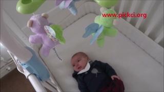 Unique Musical Animal Crib  in raising children #pickcitoys +