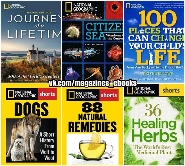 36 Healing Herbs - The World's Best Medicinal Plants