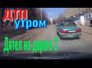 ДТП, Авария. Дятел на Дороге - 2. Чрезвычайное Происшествие. Видео Аварии.