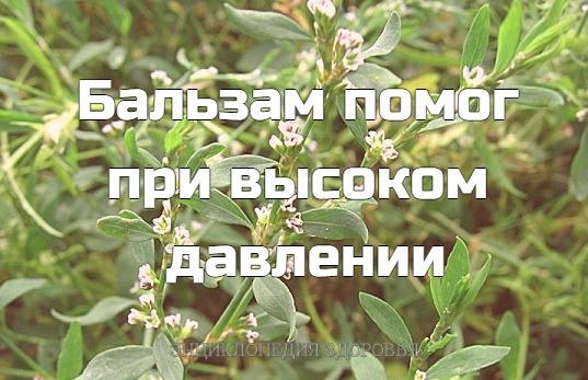Хочу сказать спасибо Евгению Михайловичу Родимину. Именно его рецепт