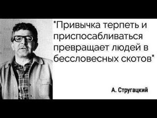Елена Васильева и Евгений Горонок - кто виноват и что делать .