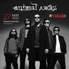 27.05.2016 | ANIMAL ДЖАZ | ПРАГА