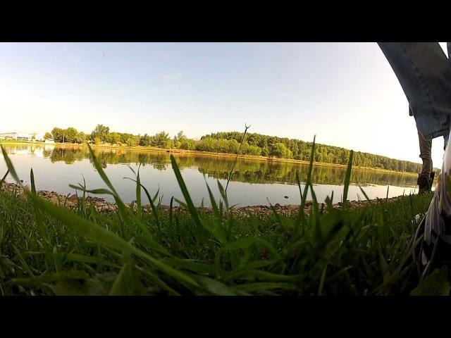 Джамгаровский пруд 1плотвичка 08 08 13