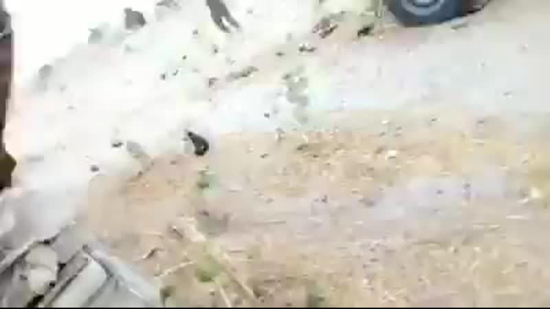 L'armée nationale tchadienne est déterminée a ne laisser aucune chance a Boko H 224 X 400 mp4