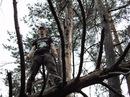 Личный фотоальбом Глеба Воденникова