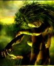 Личный фотоальбом Forest Fairy