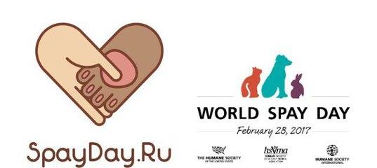 #SPAYDAY.Льготная стерилизация кошек и собак | Planeta