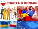 Персональный фотоальбом Роботы-В Польщі