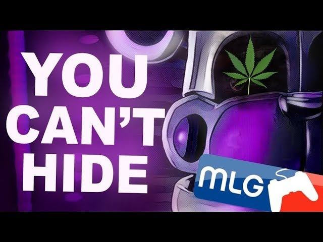 🎵 [FNaF Music] You Cant Hide MLG Remix 🎵