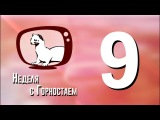 Неделя с Горностаем. Выпуск №9, 21.02.18