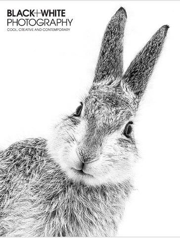 Black & White Photography – November 2015