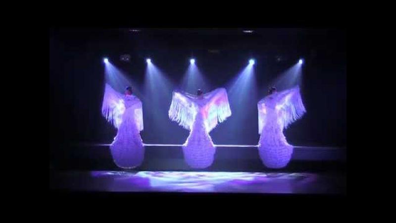 Ballet Furia, Fuego flamenco y clásico español. NEW SCALA PRODUCTION