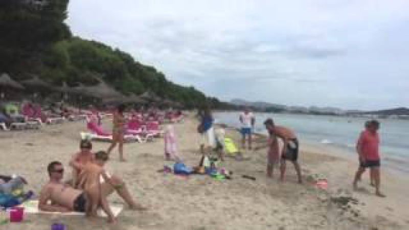 Сосновый Пляж в Алькудии остров Майорка Playa de Alcudia The Beach in Alcudia