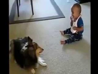 Классный детский радостный смех  Приколы с животными и детьми