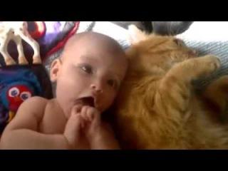 Малыш и Котэ. Умилительно)