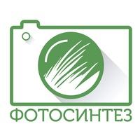 Логотип студия ФОТОСИНТЕЗ