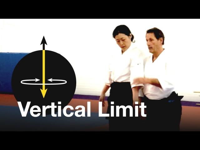 Aikido: Vertical Limit. Christian Tissier Shihan