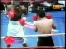 Cassius Baloyi vs Hector Lizarraga