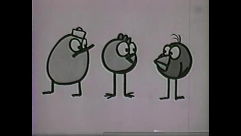 Шоу цыпленка Пипа Кай Пиндал 1962