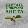 Банкротство физических лиц в Ростове-на-Дону
