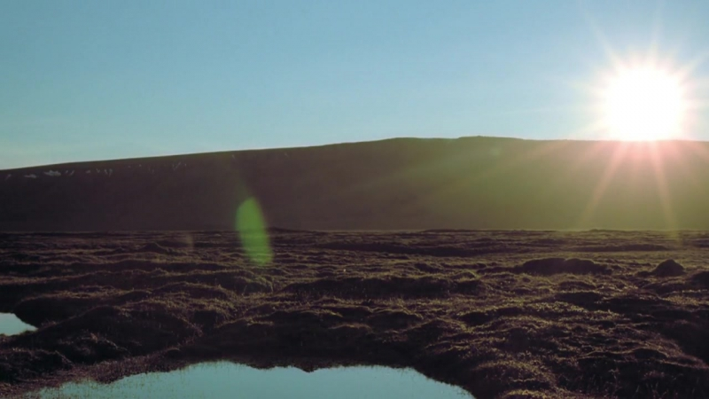 Замёрзшая планета Гренландская волнянка