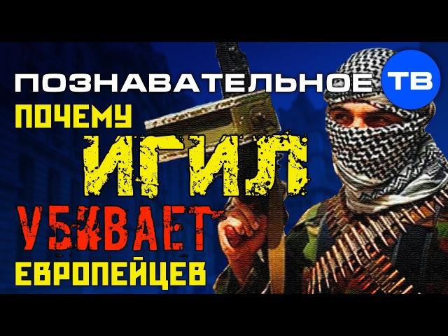 Почему ИГИЛ убивает европейцев Познавательное ТВ Артём Войтенков