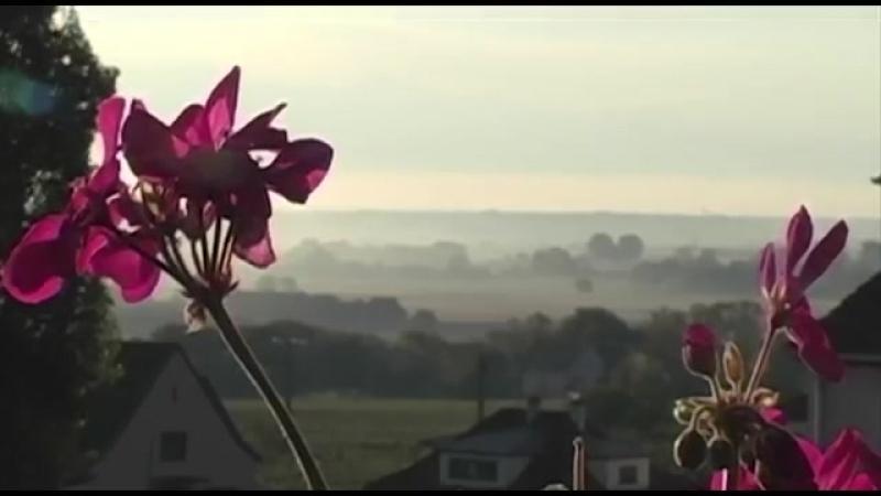 Розслаблююча музика фортепіанна музика з красивими квітами
